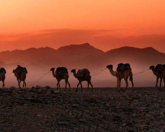desert feature